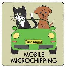 Bonsaviour microchipping